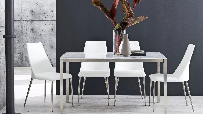 Daria Dining Chair