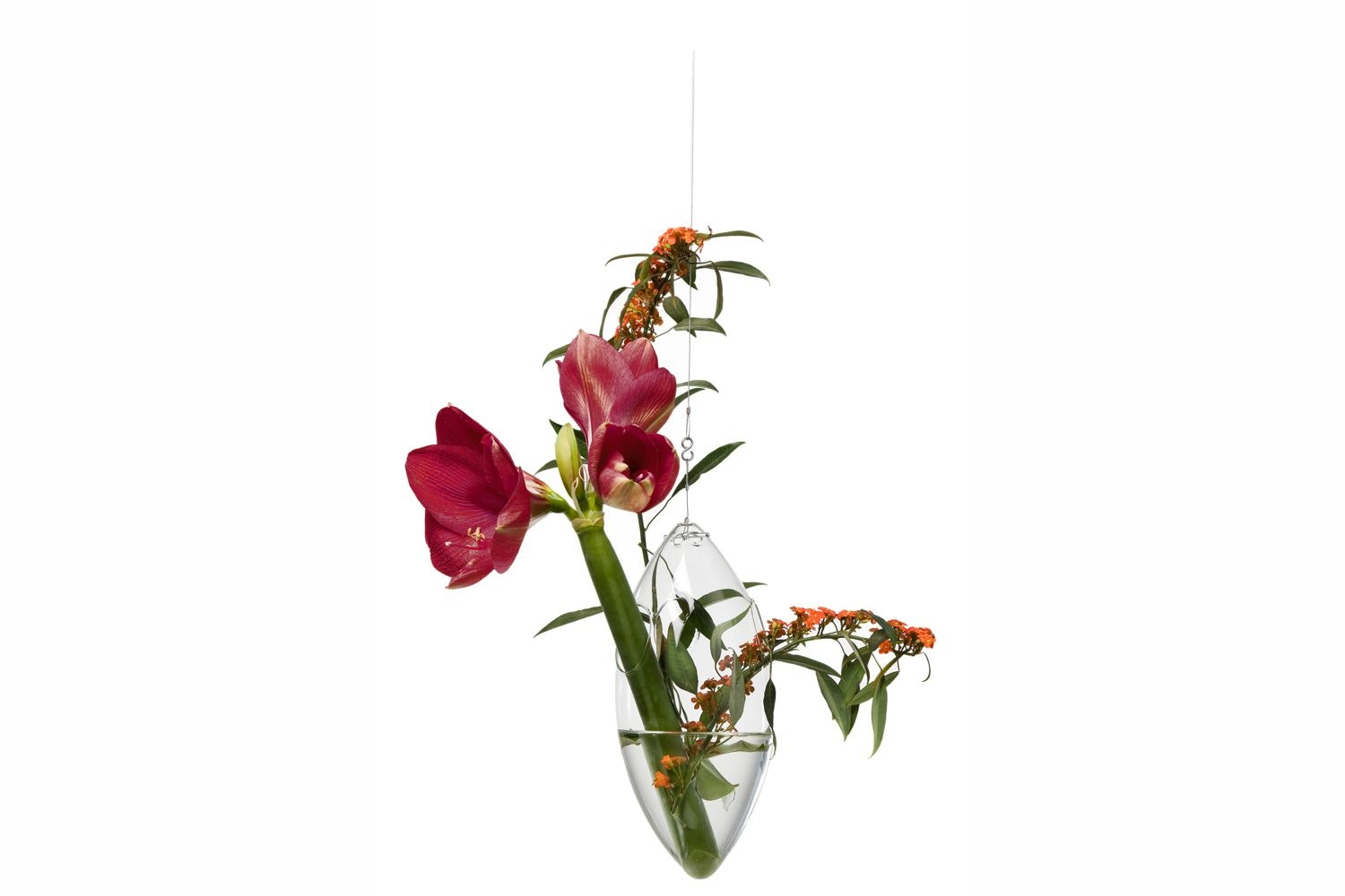 Windfall Hanging Vase by Tse & Tse