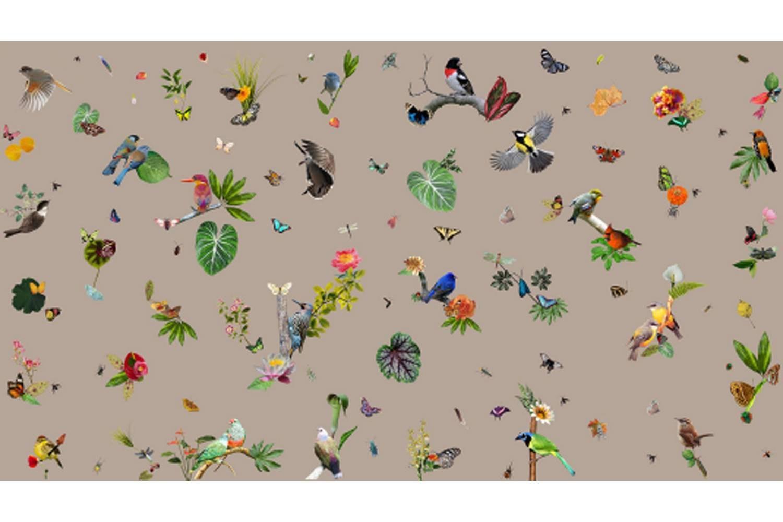 Bird Broadloom Carpet by Edward van Vliet for Moooi Carpets
