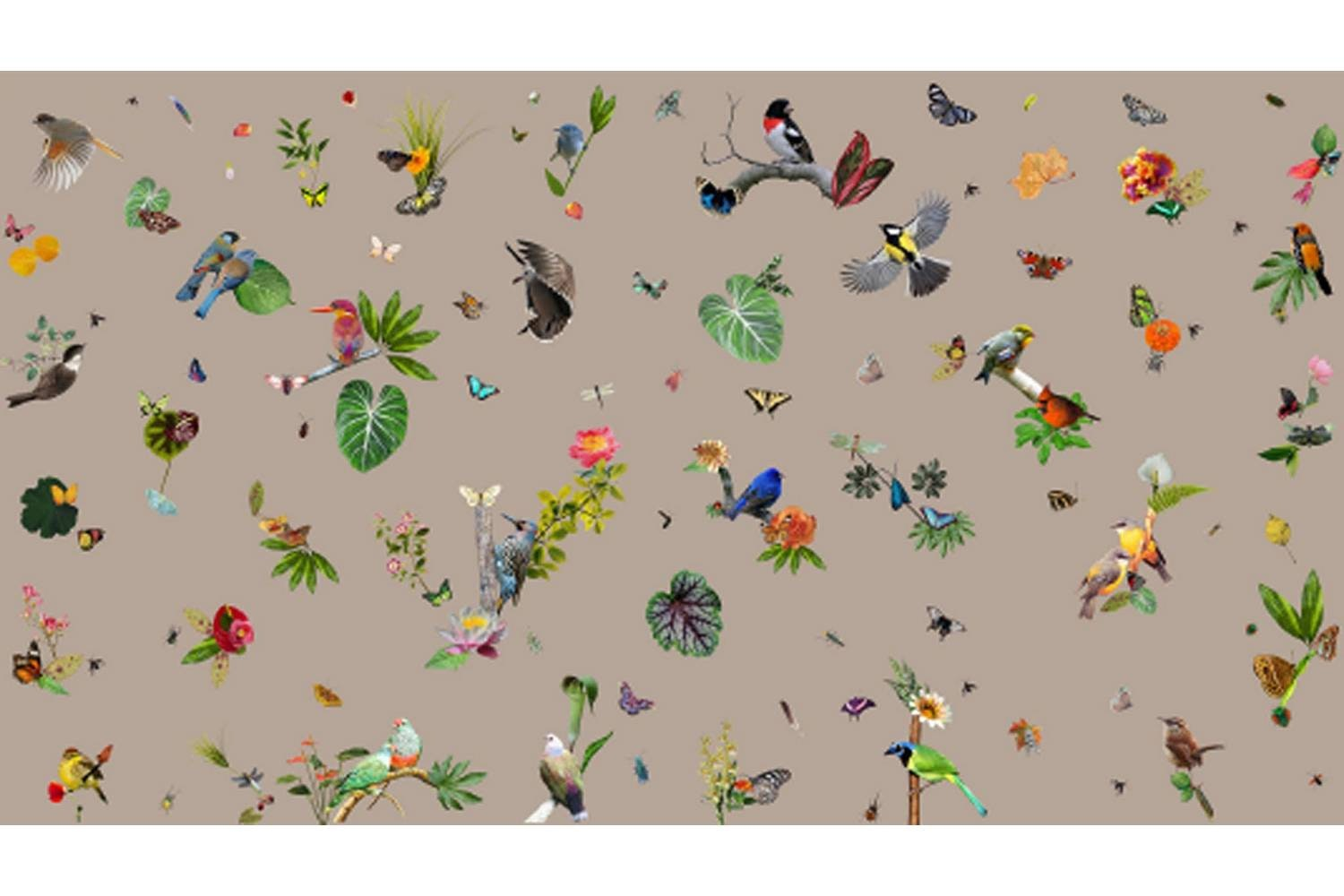 Bird Broadloom Carpet by Edward van Vliet for Moooi Carpets