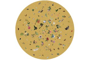 Garden of Eden Round Yellow Rug by Edward van Vliet for Moooi Carpets