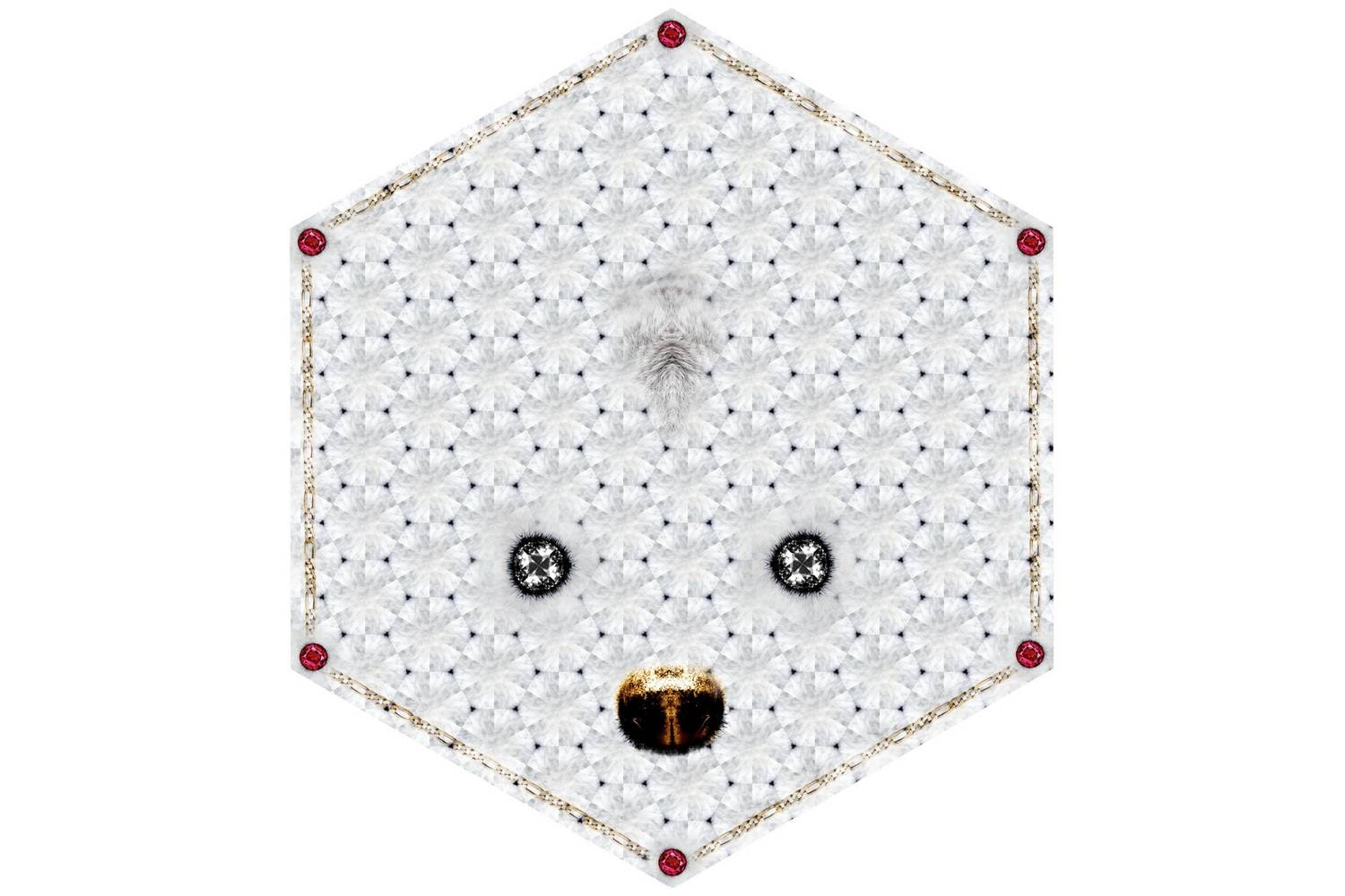 Crystal Teddy Rug by Marcel Wanders for Moooi Carpets