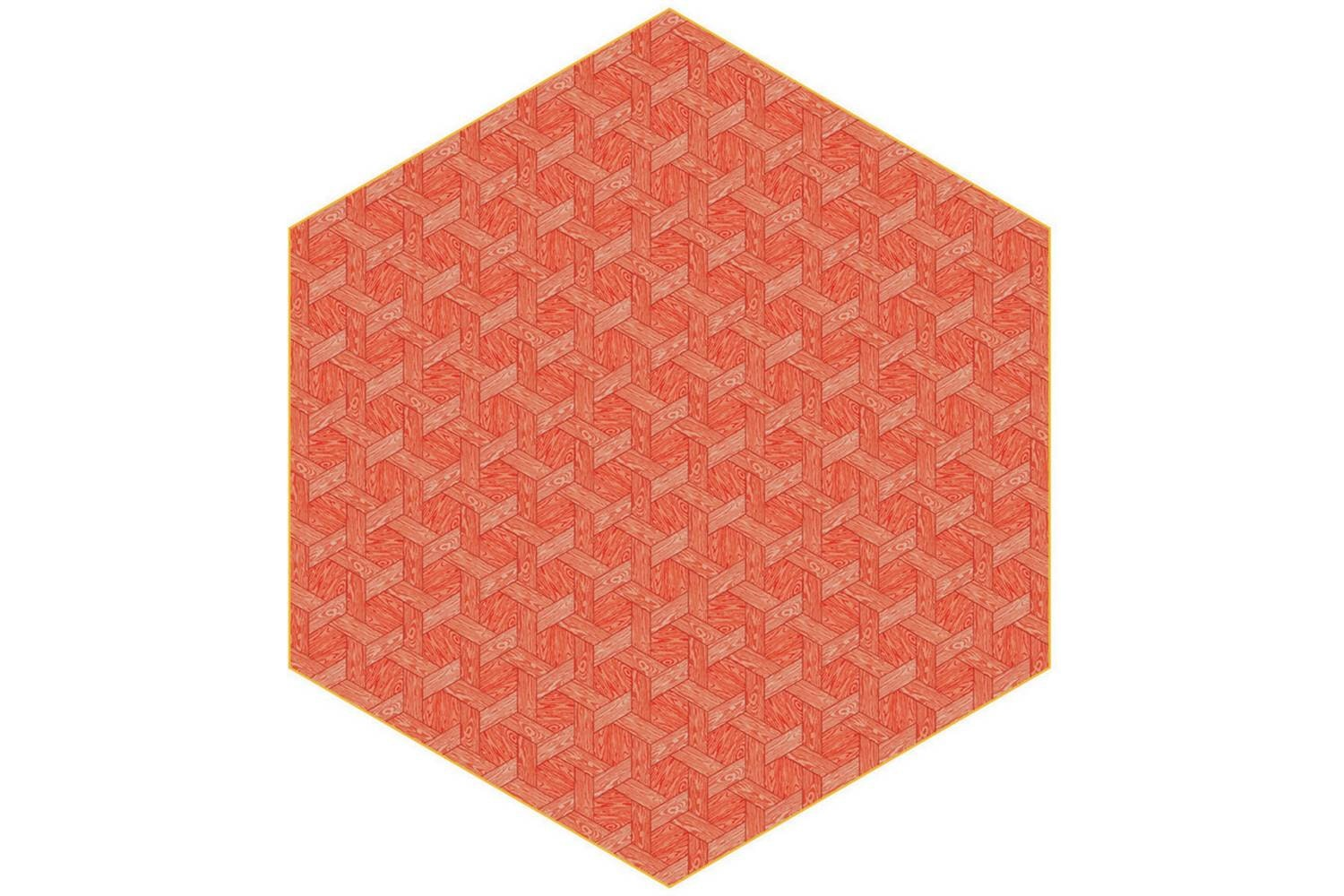 Hexagon Red Rug by Studio Job for Moooi Carpets