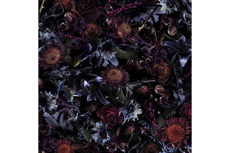 Fool's Paradise Broadloom Carpet by Marcel Wanders for Moooi Carpets