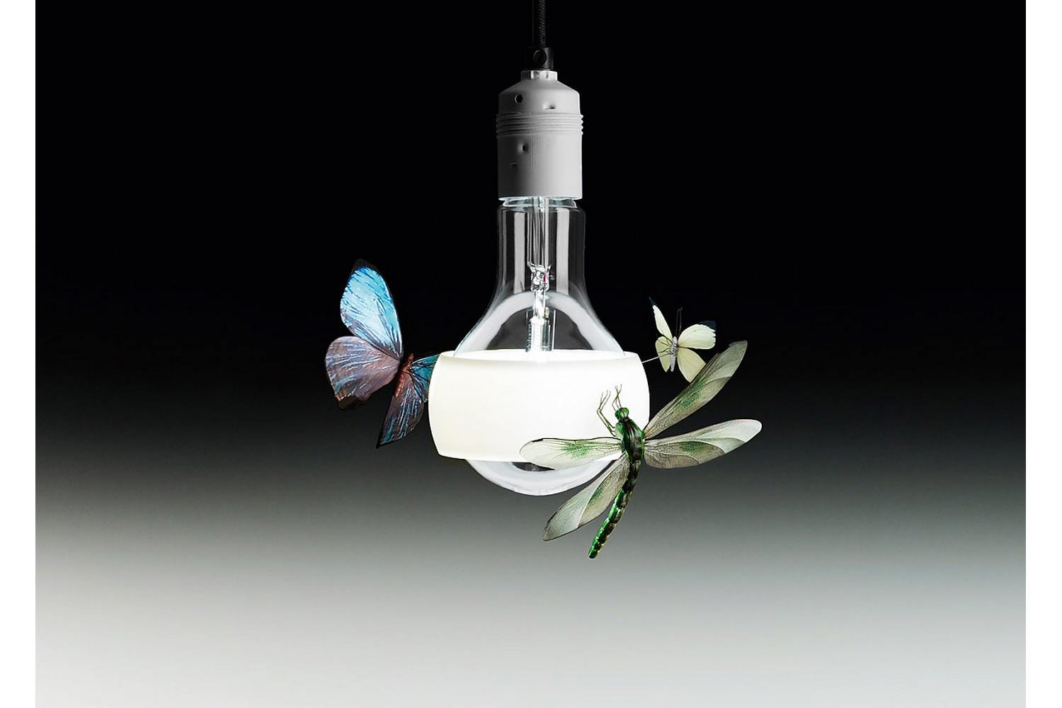 Johnny B. Butterfly Suspension Lamp by Ingo Maurer for Ingo Maurer
