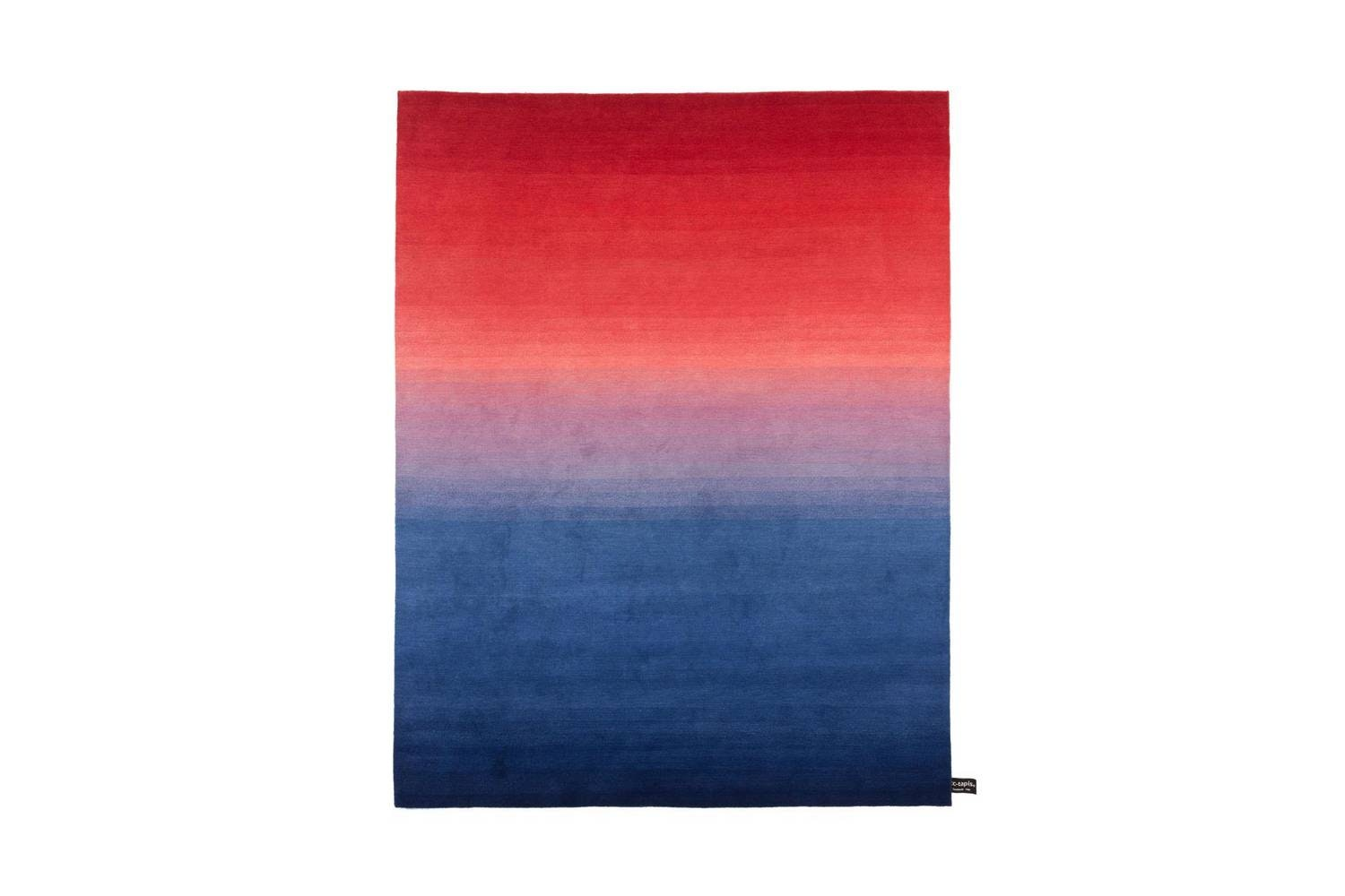 Tye 'N Dye Bicolour Rug by Architectural Collection for CC-Tapis