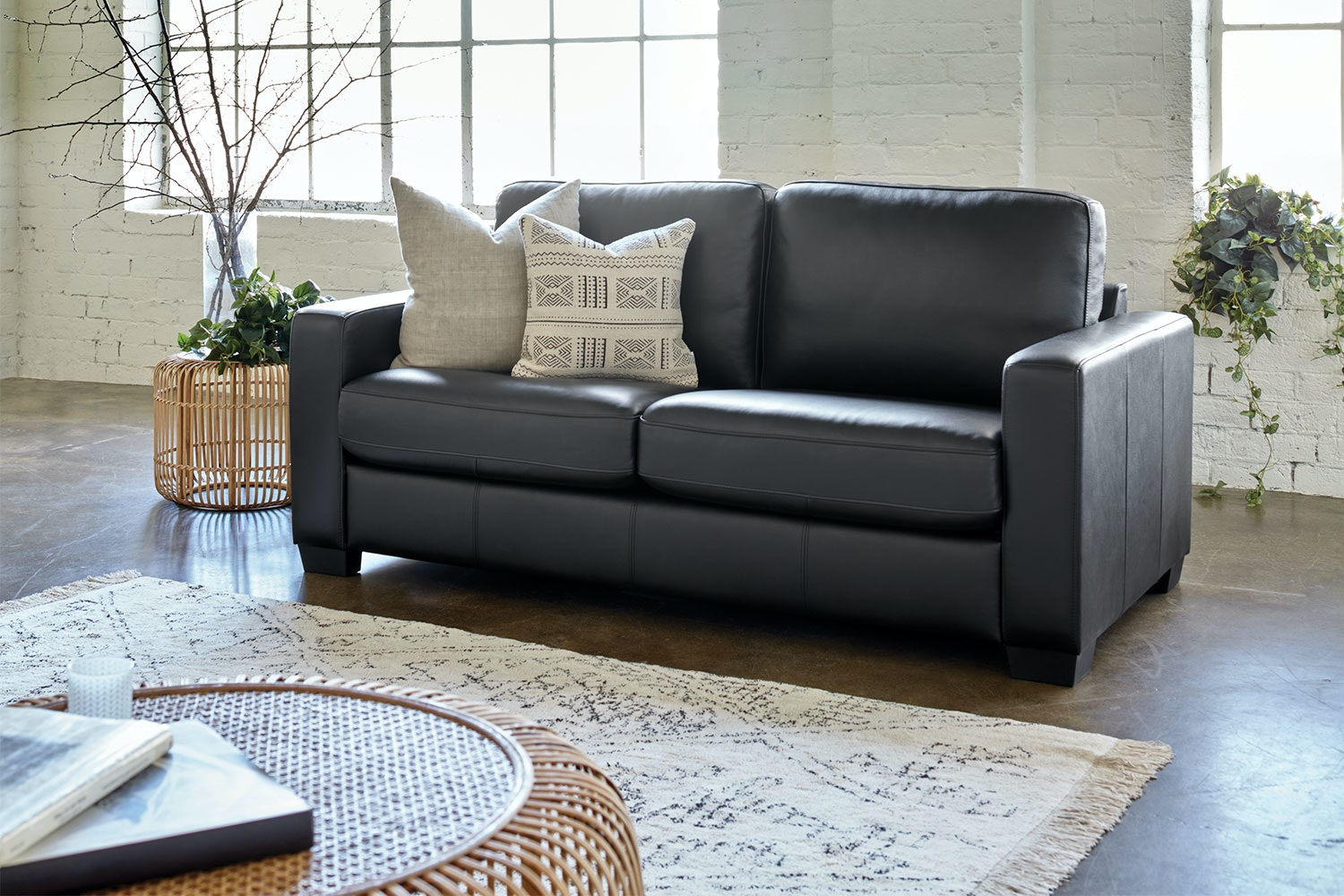 Picture of: Ariel Leather Sofa Bed Harvey Norman New Zealand