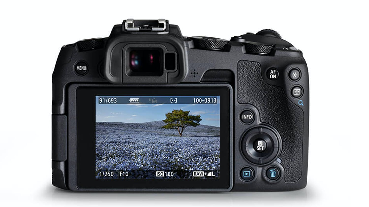 Canon EOS RP Mirrorless Body with Adapter
