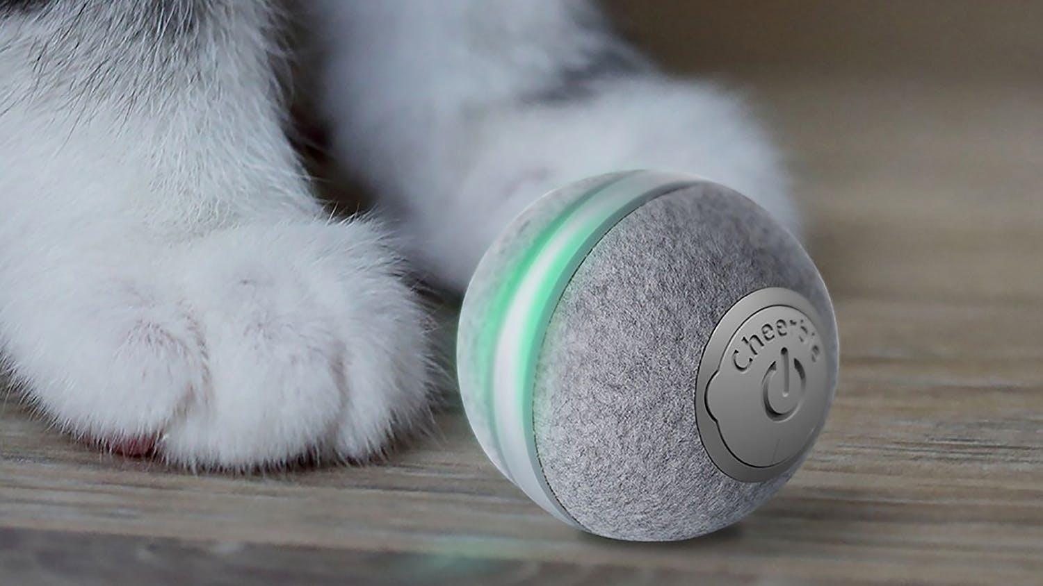 Cheerble M1 Mini Cat Ball - Grey