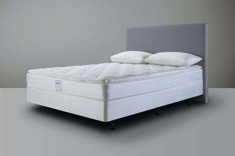 Bodyform Pillowtop Bed by Sealy