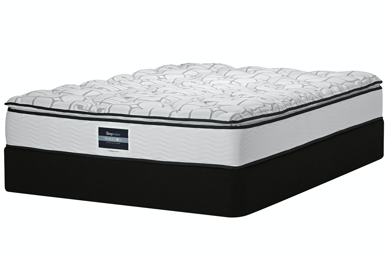 Pioneer Plush Bed by Sleepmaker