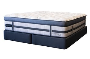 Obsession Plush Long Single Bed by King Koil