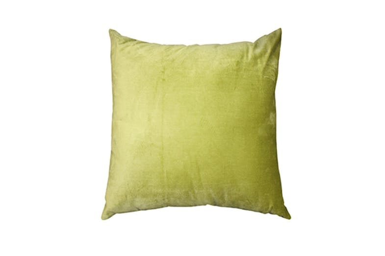 Regal Cushion Cactus Green