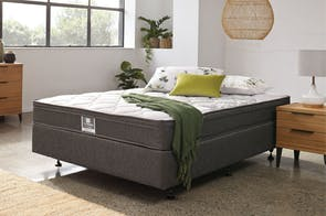 Spinecare Comfort Queen Bed by Sealy