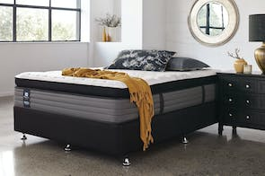 Parkwood Plush Queen Bed by Sealy Posturepedic