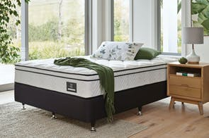 Viva Plush Double Bed By King Koil